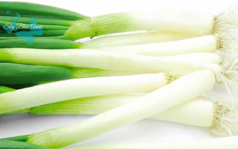 Green Onions, Scallions